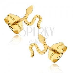 Fülbevaló 14K sárga aranyból - fényes csúszó kígyó, vésett felszín