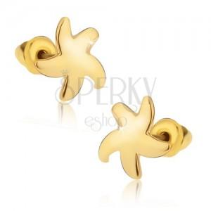 Beszúrós fülbevaló, fényes arany színű csillag