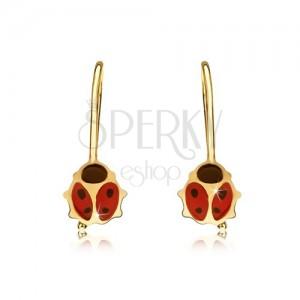 Arany fülbevaló - piros-fekete csillogó katica, fénymáz