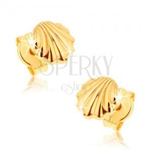 Fülbevaló 9K sárga aranyból - fényes tengeri kagyló