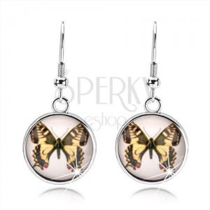 Cabochon fülbevaló afrikai horgon, sárga-barna pillangó