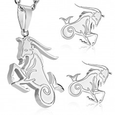 Sebészeti acél szett ezüst színben, medál és fülbevaló, BAK állatövi jegy