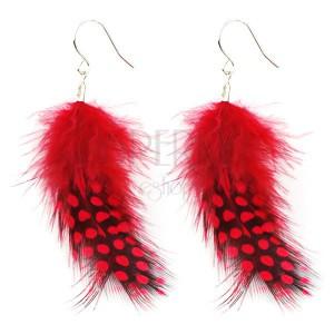 Fülbevaló tollból - fekete és piros pöttyös