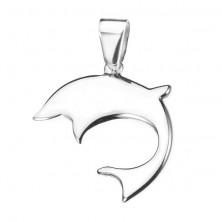 Delfin acélból - fényes medál